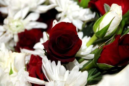 بالصور اجمل صور بوكيه ورد , انواع الورود للعشاق والاحباب 3132 3