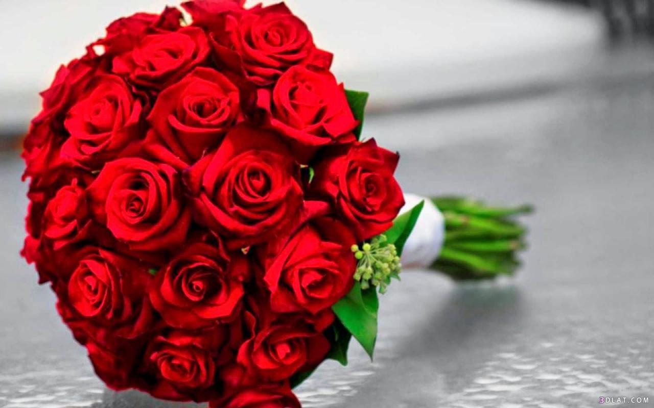 صورة اجمل صور بوكيه ورد , انواع الورود للعشاق والاحباب