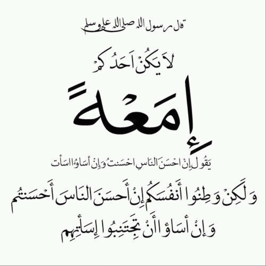 بالصور ما معنى امعة , شرح كلمه امعه في اللغه العربيه 2043