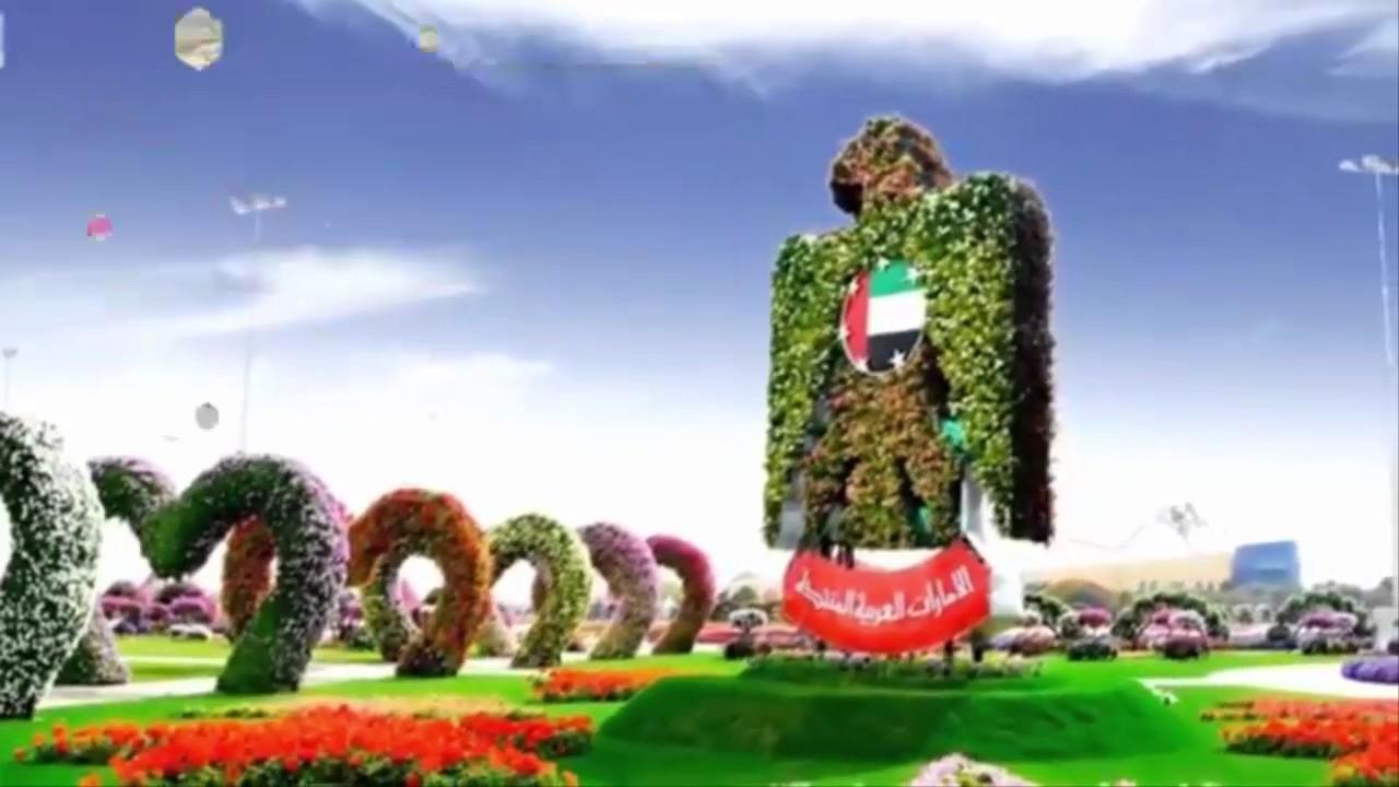 صور اجمل حدائق دبي , 3 حدائق جميلة في دبي يجب عليك زيارتها