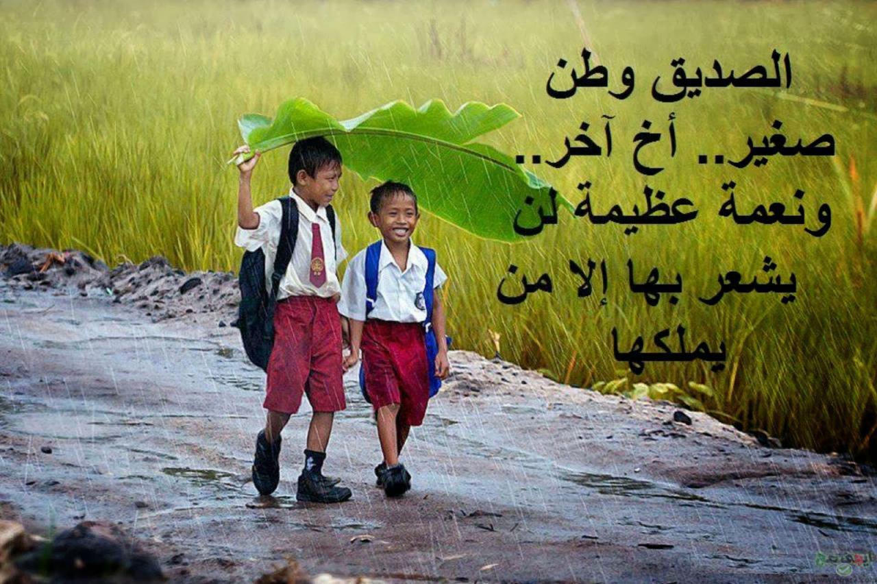 بالصور شعر قصير عن الصداقه , اجمل ما قيل عن الصداقه 4672 8