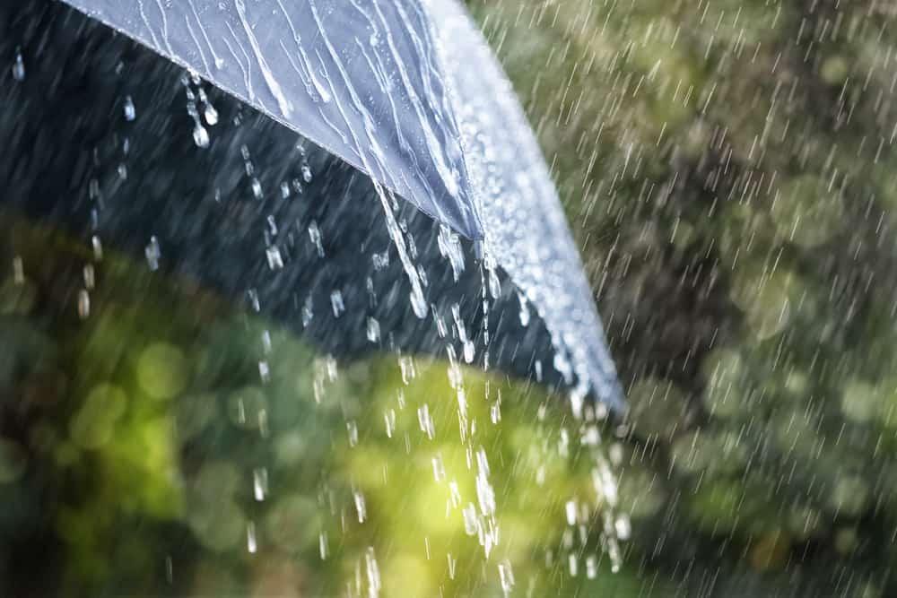 صور تفسير حلم المطر للمتزوجه , حلمت الدنيا بتمطر