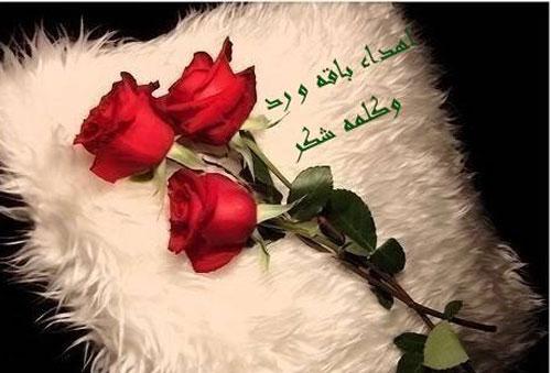 بالصور رسالة شكر لفاعل خير , رسايل شكر وعرفان وتقدير 2437 5