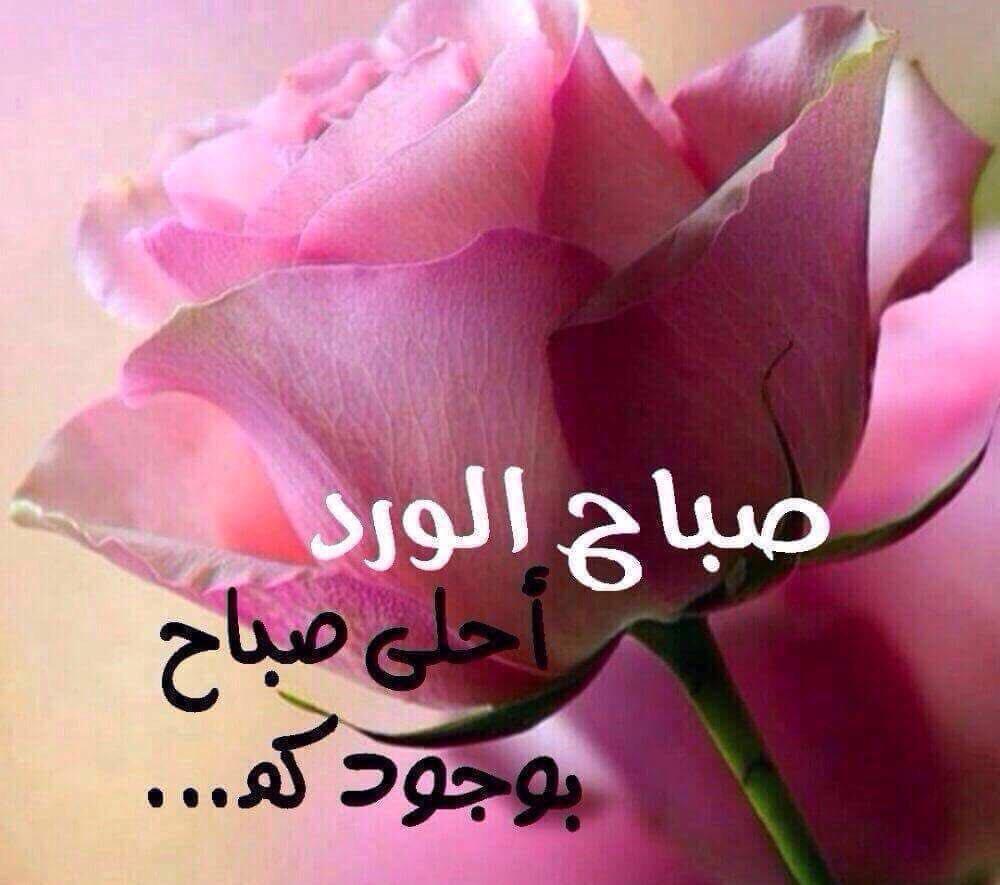 صورة رسائل صباحية قصيرة , رسايل صباحيه للفيس بوك