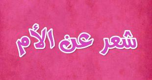 بالصور شعر عن الام الحنونة قصير , اجمل الاشعار التي تعبر عن حنان الام 3561 13 310x165