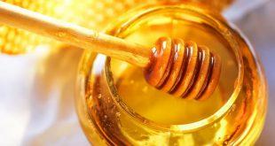 صور علاج انعدام الحيوانات بالعسل , افضل طريقه لعلاج انعدام الحيوانات المنويه