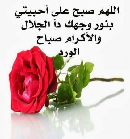 بالصور كلمات حب صباحية لحبيبتي , صباح الحب يا حبيبتي 4592 5