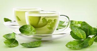 صورة الشاي الاخضر للتنحيف , افضل طريقة لشرب الشاى الاخضر فى التخسيس
