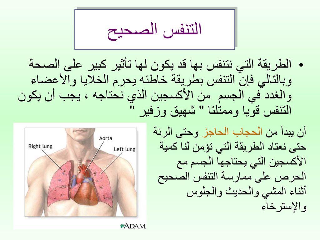صورة طريقة التنفس الصحيحة , مامعنى التنفس بالطريقة الصحيحة وانعكاستها على الصحة 1582 1