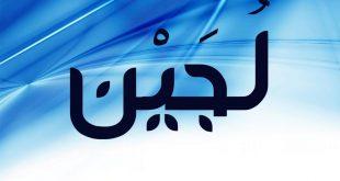 صور ما معنى اسم لجين في الاسلام , هل اسم لجين يحرمه الاسلام