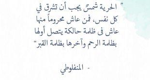 صورة شعر عن الحريه , كلمات رائعه عن الحرية