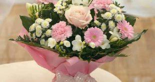 صور اجمل صور صباح الورد , صور صباحية مكتوب عليها صباح الورود