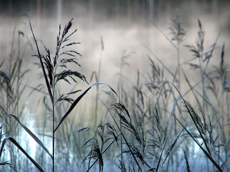 صورة تحميل صور من انستقرام , اجمل الصور علي الانستجرام 1346 6