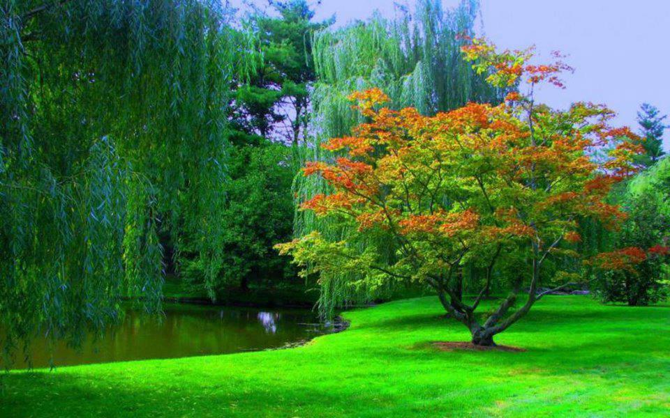 صورة صورة منظر طبيعي , اجمل صور المناظر الخلابة والطبيعية
