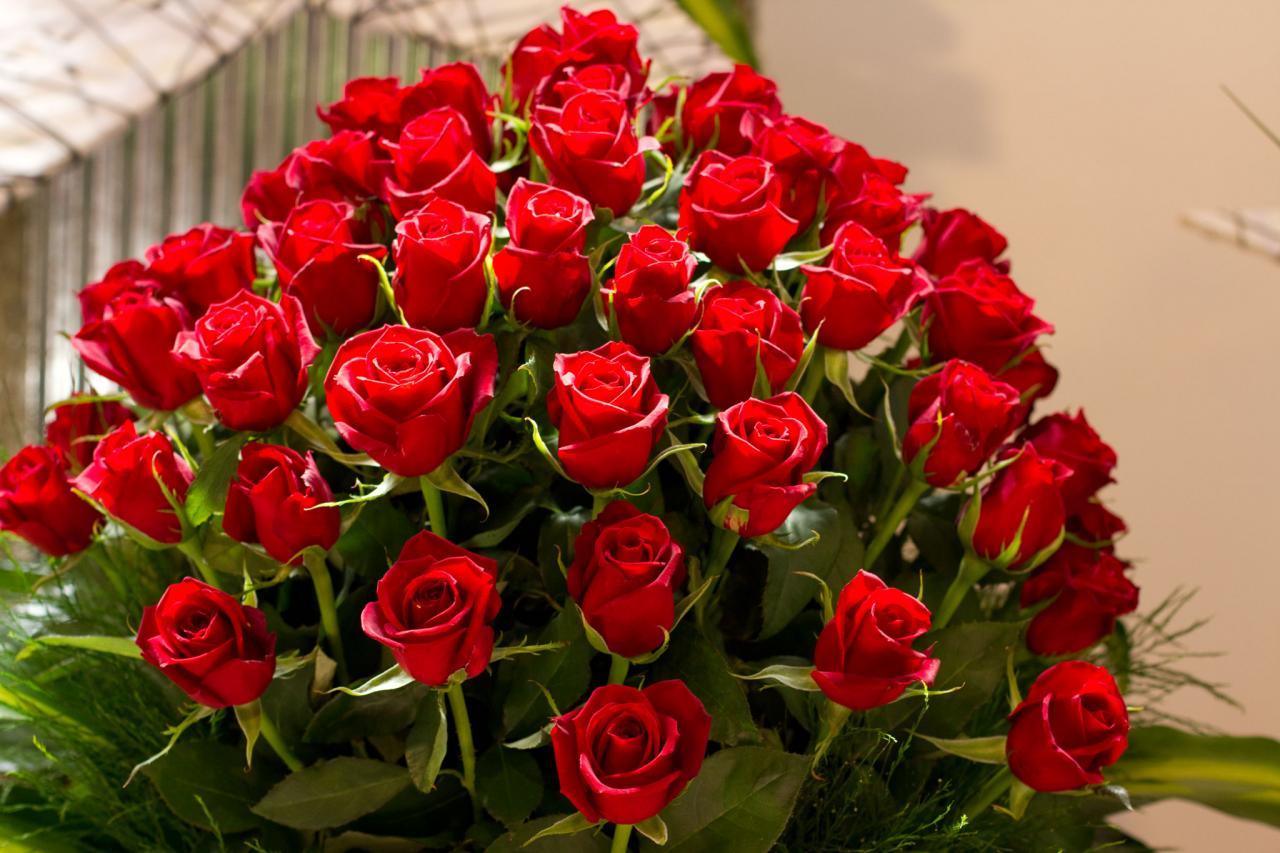 صورة اجمل صورة الورود , ورود جميلة جدا بالصور