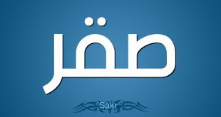 صورة معنى اسم صقر , شرح اسم صقر