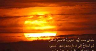 صورة كلام عن شروق الشمس , عبارات جميله عن شروق الشمس