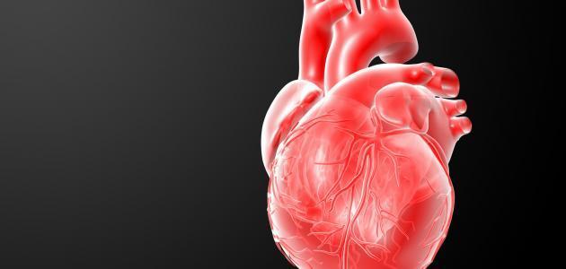 صورة انقباضات القلب المفاجئة , اسباب انقباضات القلب اللي بتجي فجاة