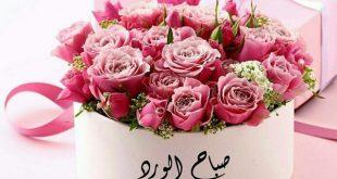 صورة صباح الخير و الورد , حبيبي صباح الفل