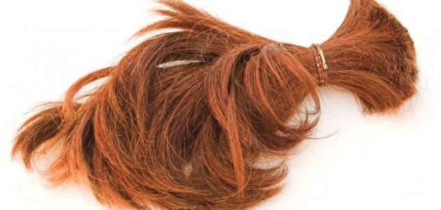 صورة تفسير حلم تساقط الشعر بكثرة , بحلم دائما ان شعري بيوقع