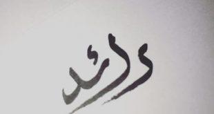 صورة معنى اسم رائد , يعني ايه رائد