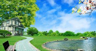 صورة صور مناظ طبيعية , الخضار و السماء الصافية