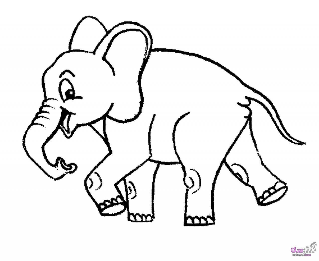 رسومات اطفال للتلوين حيوانات pdf
