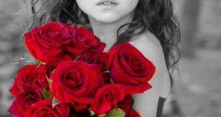 صورة رمزيات ورود روعه, اروع صور باقات الورود