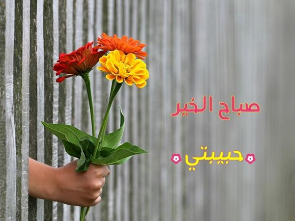 صورة حبيبتي صباح الخير, فرح قلب حبيبك بطرق سهلة وبسيطة