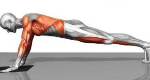 صورة تمارين لشد عضلات البطن في اسبوع, للحصول علي بطن ممشوق وقوام سليم