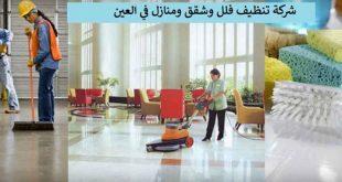 صورة شركة تنظيف العين, تخلصي من مشكلة تنظيف المنزل