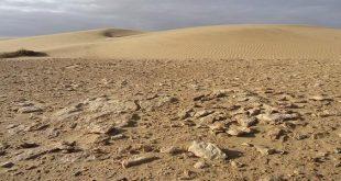 صورة كيف يحدث التصحر, عوامل تدهور الزراعة في البلاد