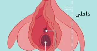 صورة حجم فتحة المهبل الطبيعي, لضمان السعادة الجنسية عليكي بالتالي