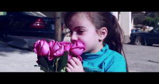 قصة بائعة الورد